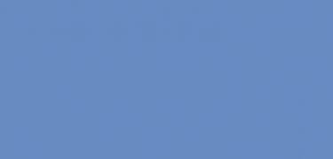 Dickson Orchestra 8204-Bleuet