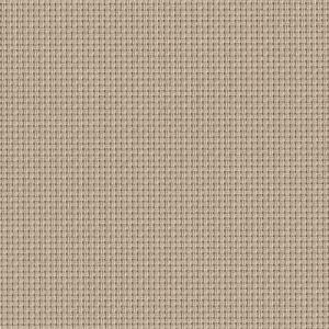 Horizon_95_Paperbark