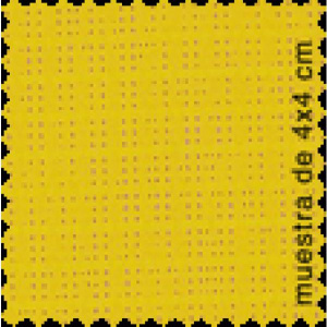 soltis-92-2024-strong_yellow